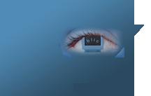 blic-voraus Logo